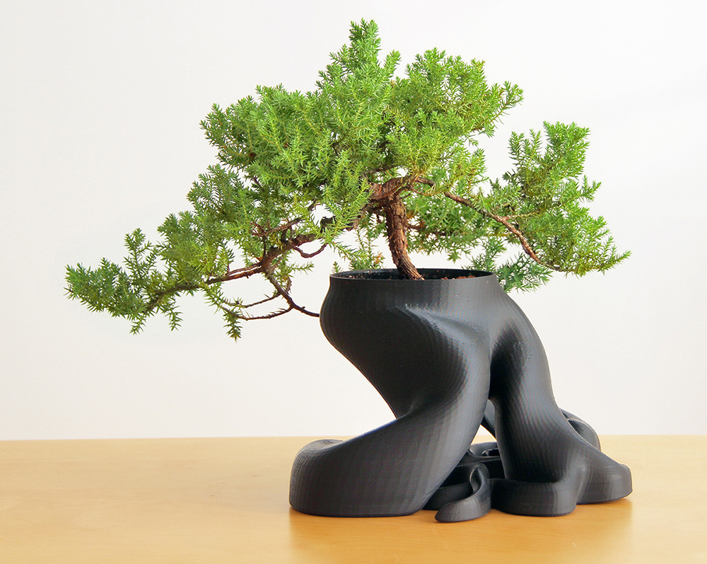gcreate bonsai planter.jpg